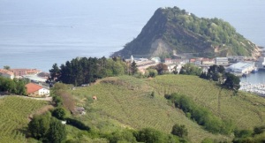 Chacoli vineyards right by the sea
