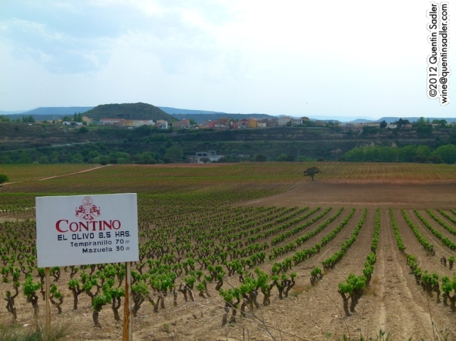 2 superb grape varieties growing at Contino in Rioja