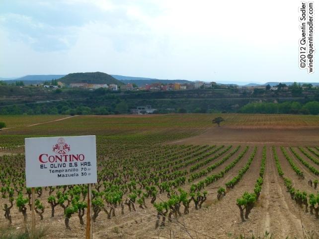 2 superb grape varieties growing at Contino in Rioja