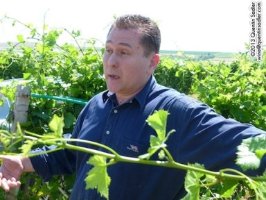 Angelos Latridis the charismatic and winemaker and owner of the Alpha Estate.