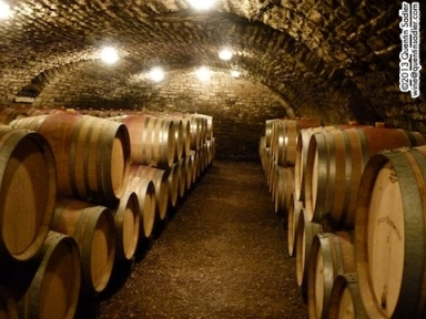 The beautiful cellars of Domaine Heresztyn in Gevrey-Chambertin