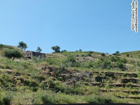 The hillsides around Castiglione di Sicilia.