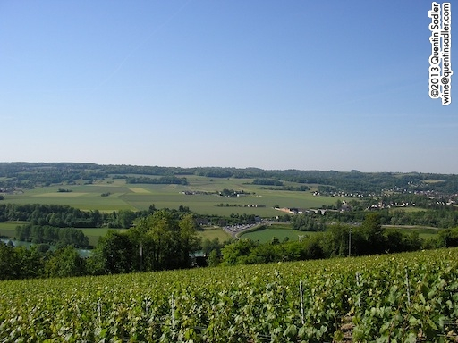 The beautiful vineyards of Champagne.