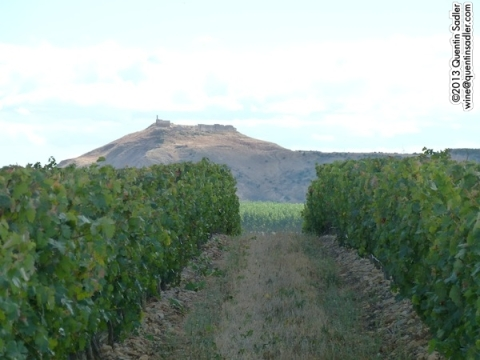 Views from Ochoa's Traibuenas vineyard near Olite.