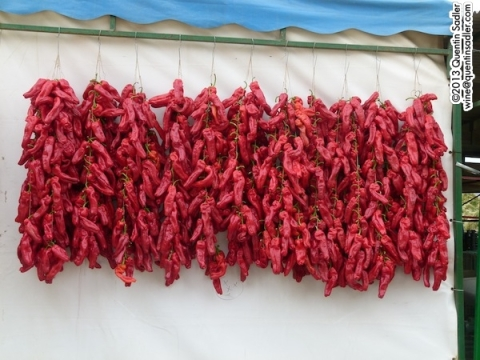 Piquillo peppers hung out to dy.