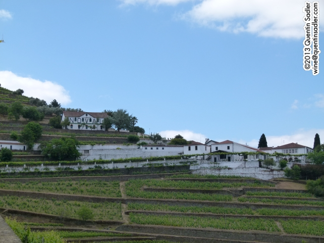 The beautiful Quinta do Noval