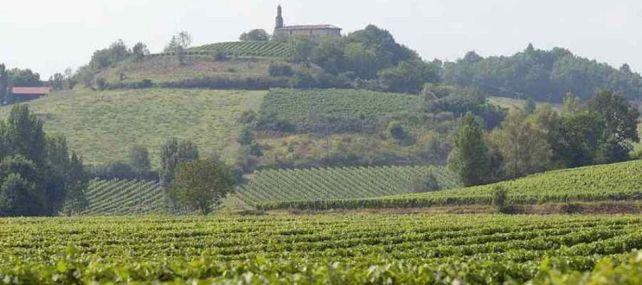 Château Clement Termes