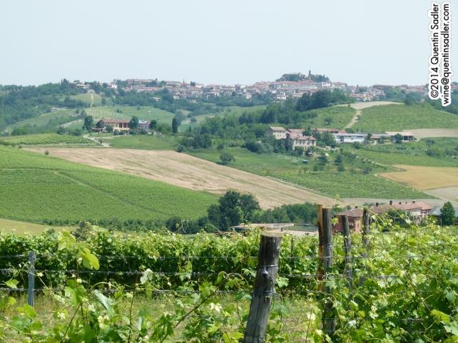 Vignale in Monferrato.