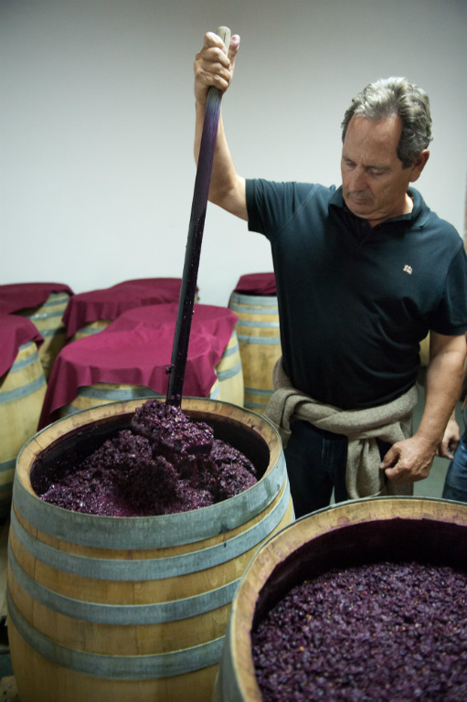 Juan Magaña hand plunging the grapes as they ferment in the barrels. This ensures good extraction of colour, tannins and flavour.