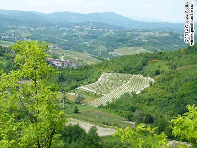 The rolling hills of Gavi.