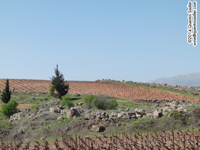 The landscape at Kefraya.