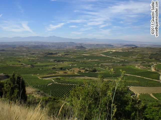 Looking south across Rioja's vineyards from the Sierra de Cantabria mountains.