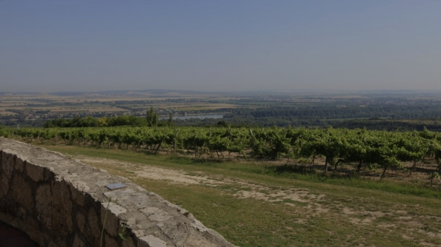 The view from Hilltop towards the Danube and Slovakia.