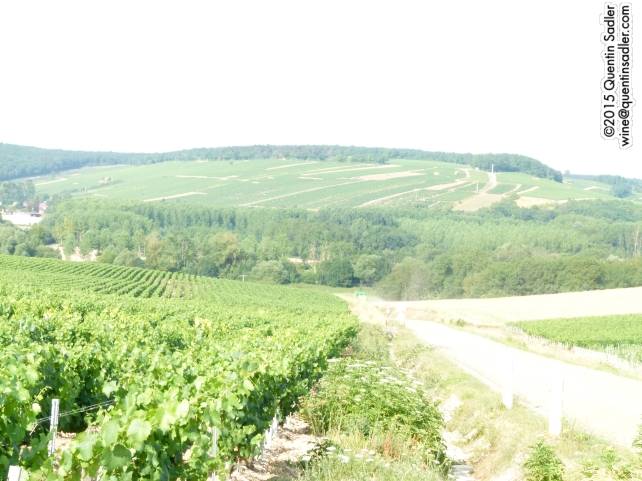 Chablis vineyards, looking North.