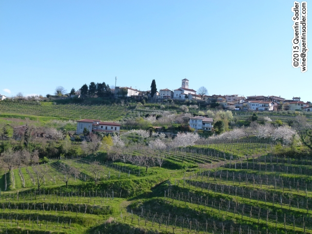 Dobrovo perched on top of a terraced vineyard slope in Brda, Slovenia.