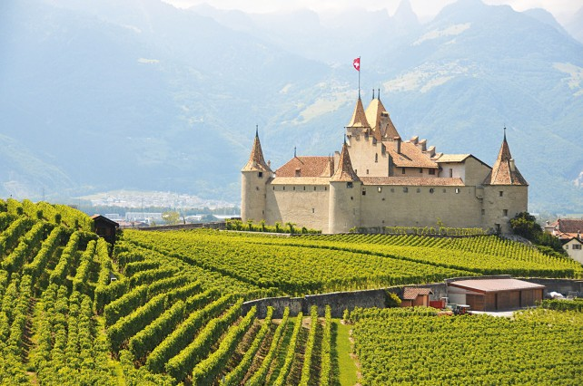 The stunning Chateau d'Aigle, where I went to work judging Chasselas wines.