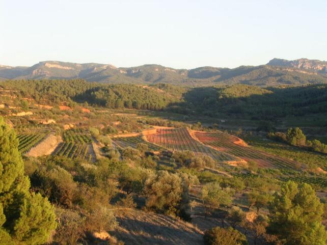 Montsant's rugged, but beautiful landscape.