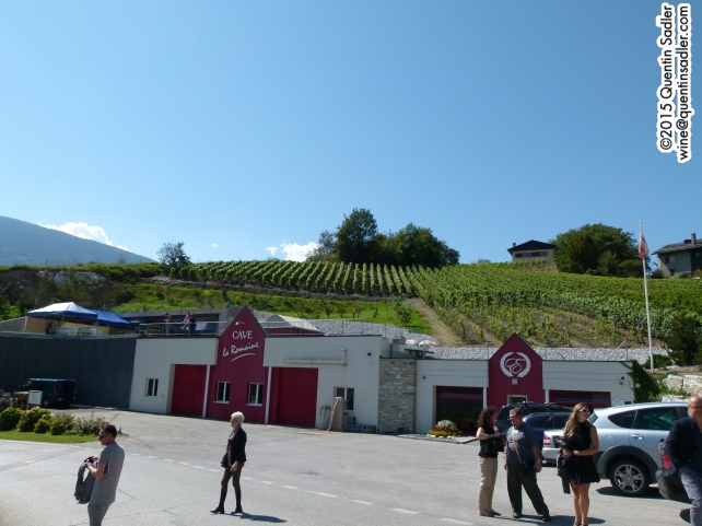 Arriving at Cave La Romaine, I love the way it is built into the vineyard with vines on its roof.