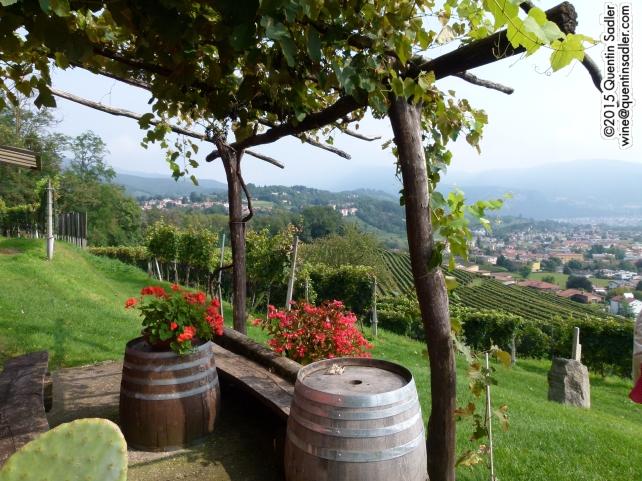 Another view of Tenuta Montalbano.