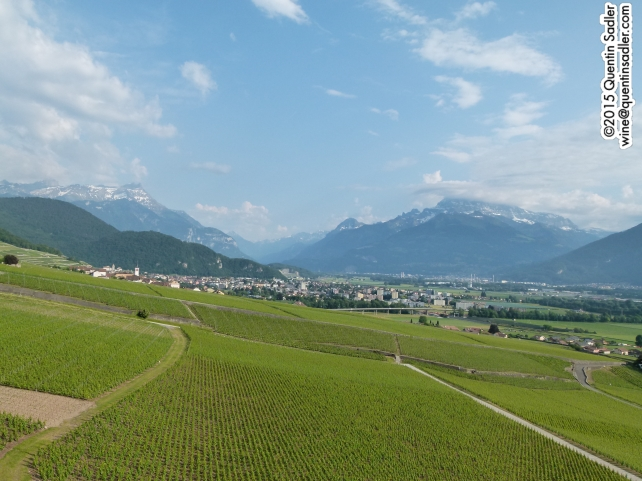 The beautiful, but very different vineyards of Chablais.