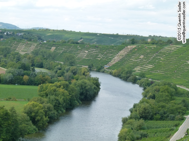 The beautiful Neckar Valley is like a mini-Mosel.