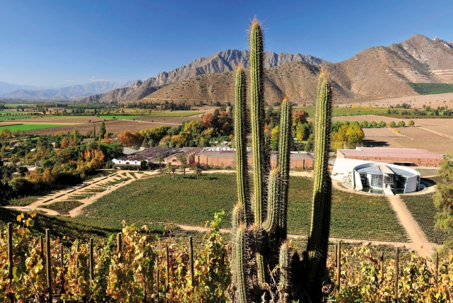 The Errazuriz Estate in Chile - photo courtesy of the estate.