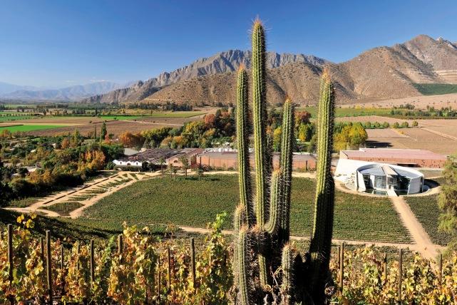 The Errazuriz Estate in Chile - photo courtesy of the estate.