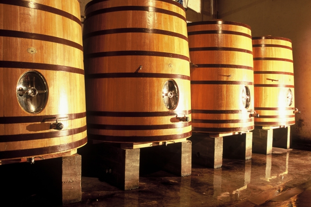 The fermentation vats at Domaine la Borie Blanche - photo courtesy of the winery.