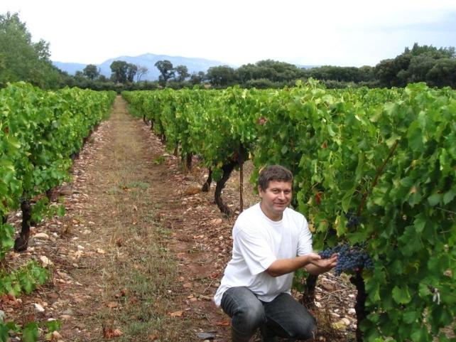 Charles dans la vigne Gourp de Luquet.2