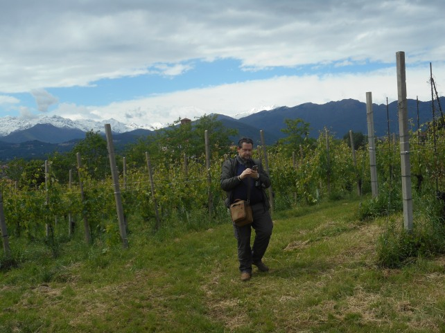 Your author amongst the vines at Tenute Sella.