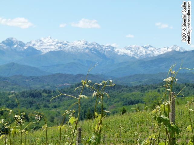 The beautiful views from Gattinara.