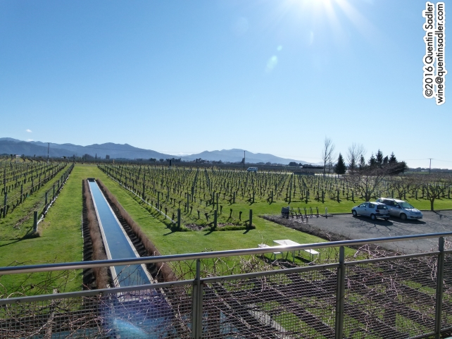 The view from the balcony at Villa Maria's Marlborough winery.