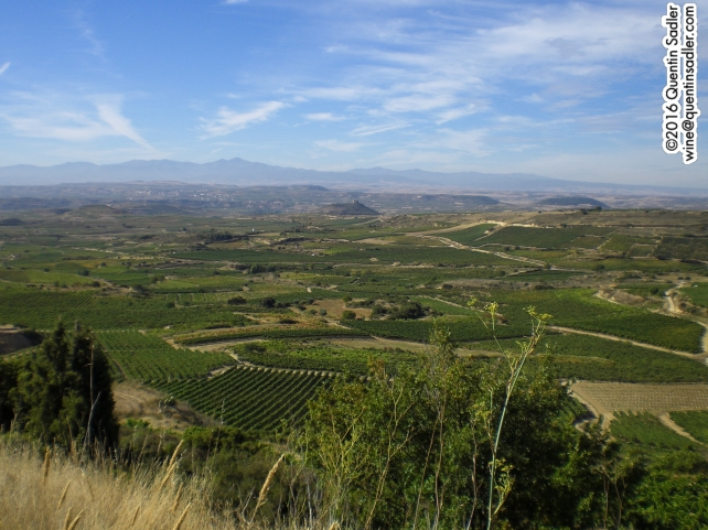 Looking south across Rioja just north of Haro.