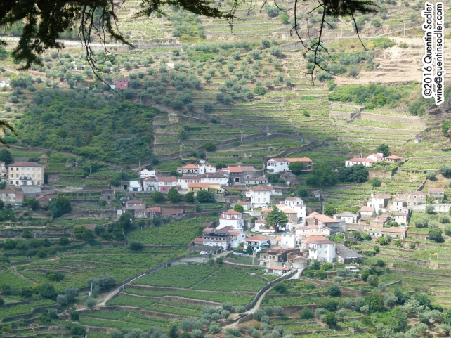 The Douro Valley near Pinhão.