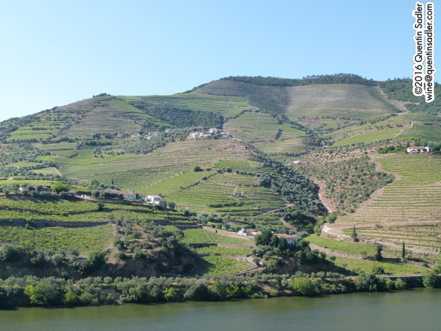 The beautiful Douro Valley.