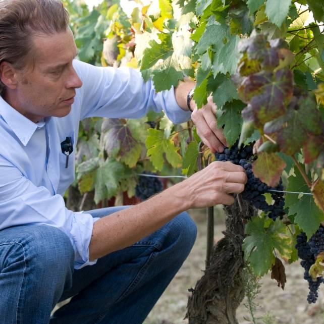 DSC7074_tasting_grapes-1-1500x1500