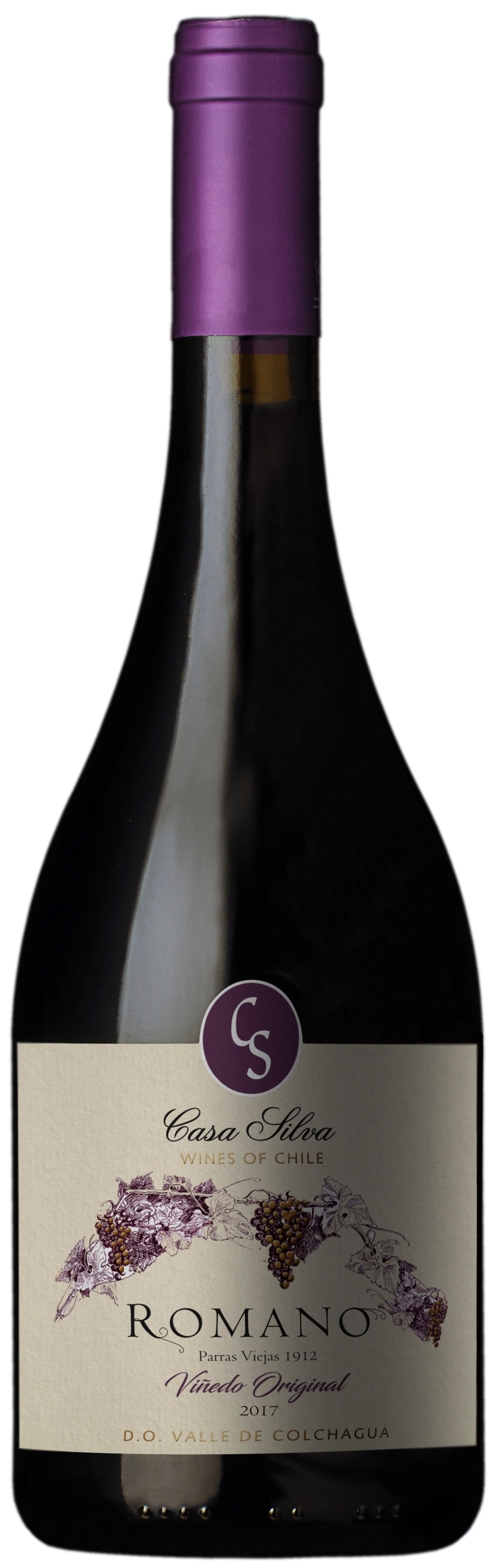 Wine of the Week – a surprise from Chile